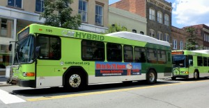 hybrid buses, Savannah